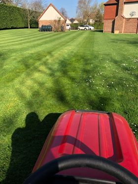 Countax garden tractor leaves stripes