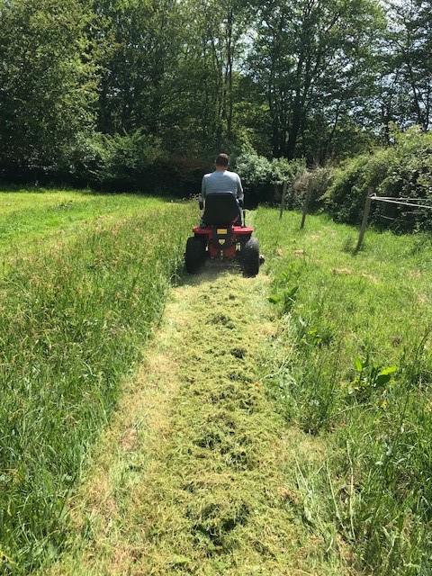 Countax garden tractor cutting tall grass