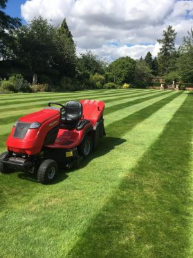 Countax garden tractor on striped lawn