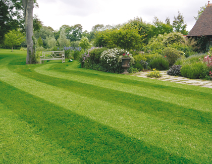 Countax garden tractor mower striped lawn