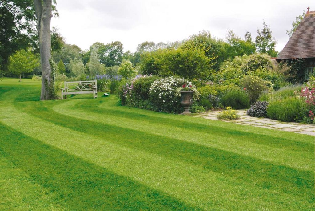 Striped lawn and flowers in border
