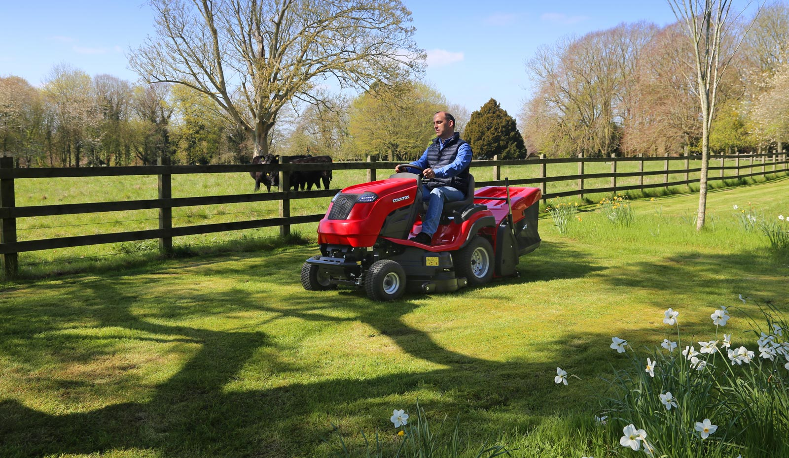 Countax C Series garden tractor with PGC+ cutting and collecting grass by daffodils in Spring
